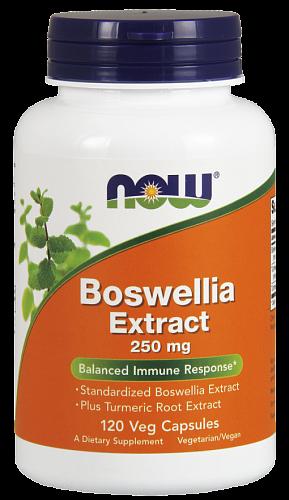 NOW Boswellia, Босвеллия Экстракт 250 мг - 120 капсул